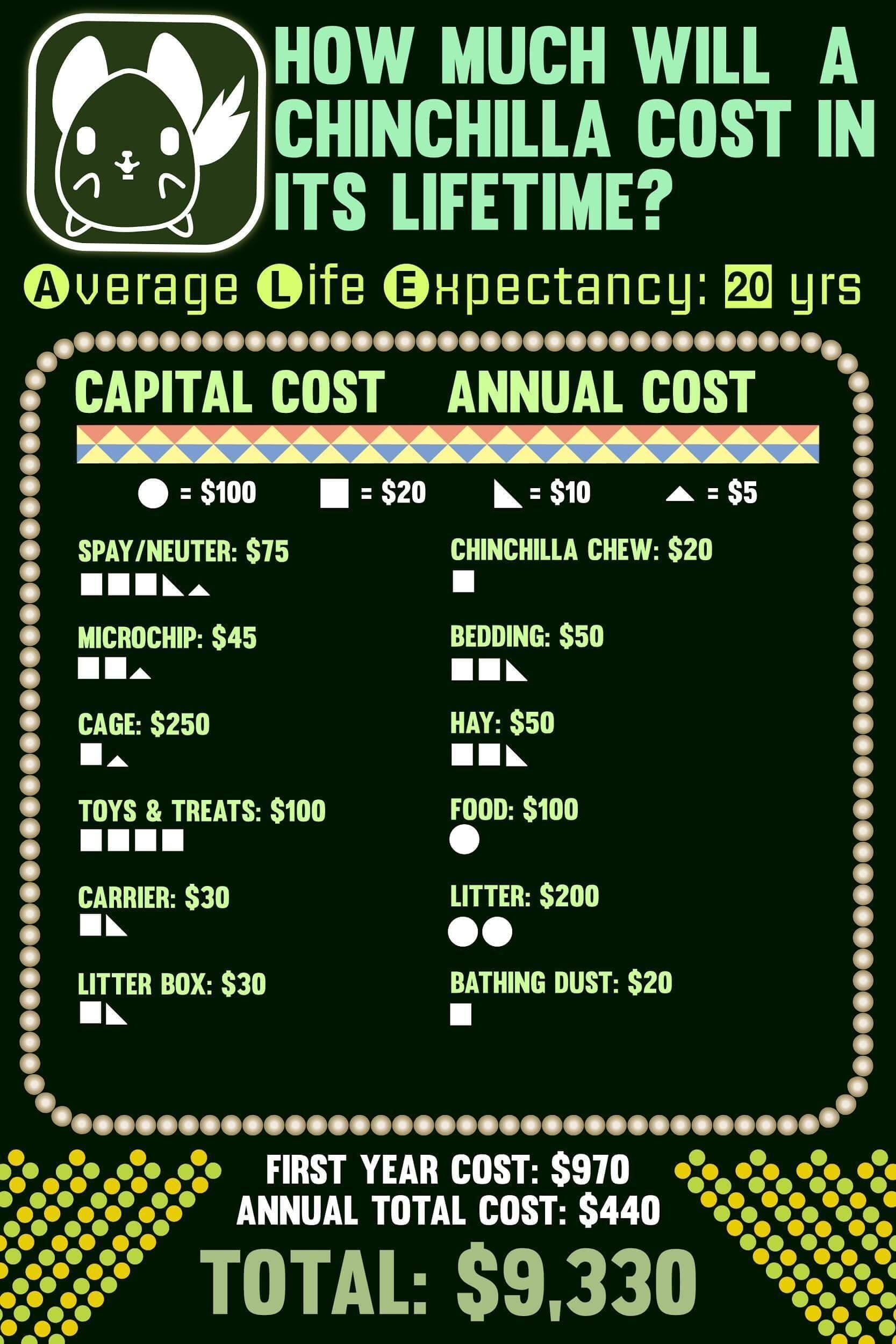 Lifetime cost of chinchillas