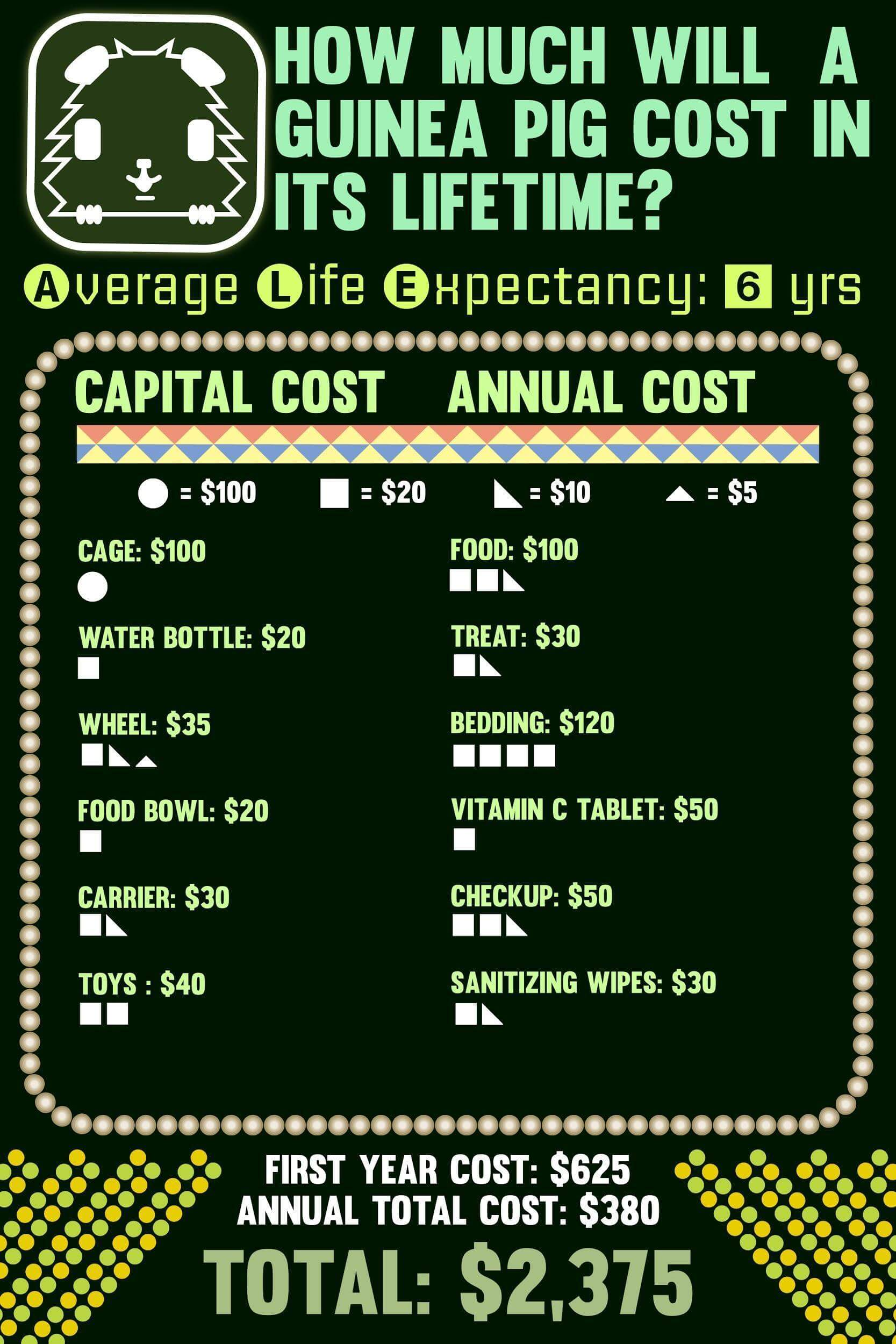 Lifetime cost of Guinea Pigs