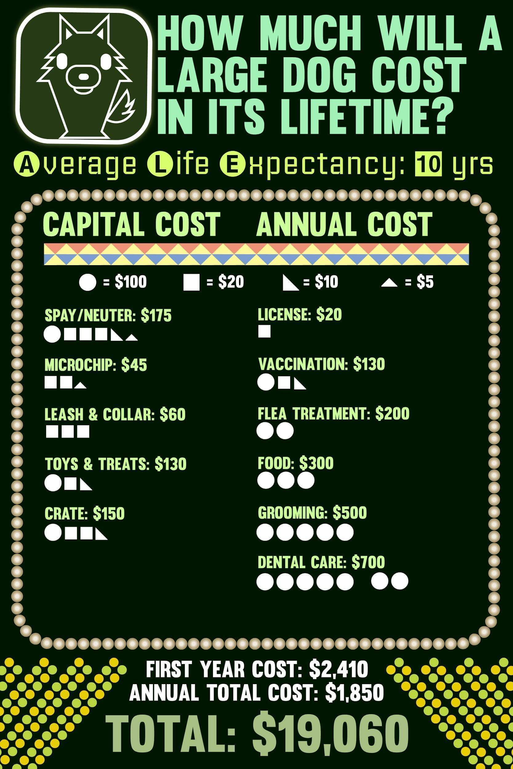 Lifetime cost of large dogs