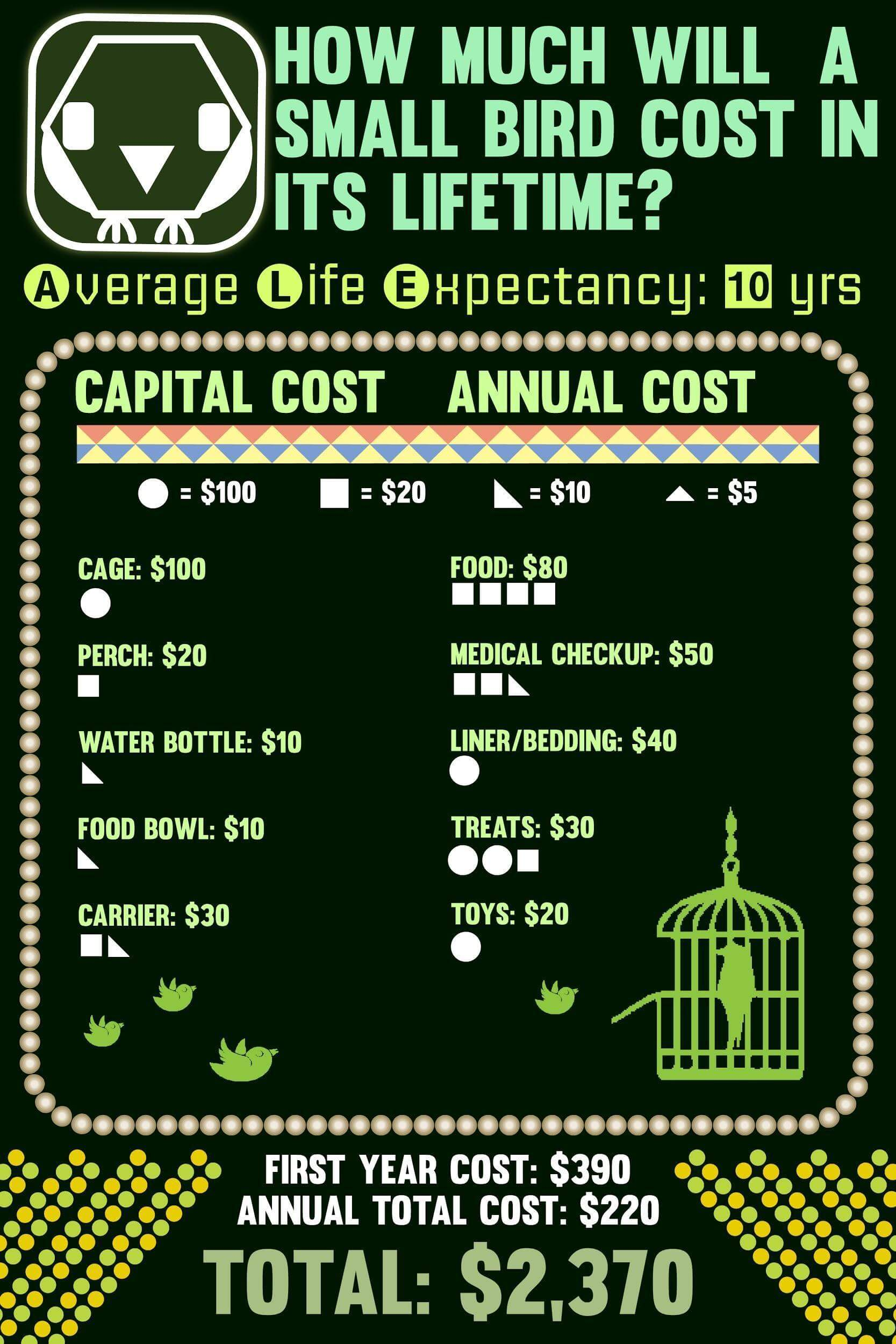 Lifetime costs of small birds