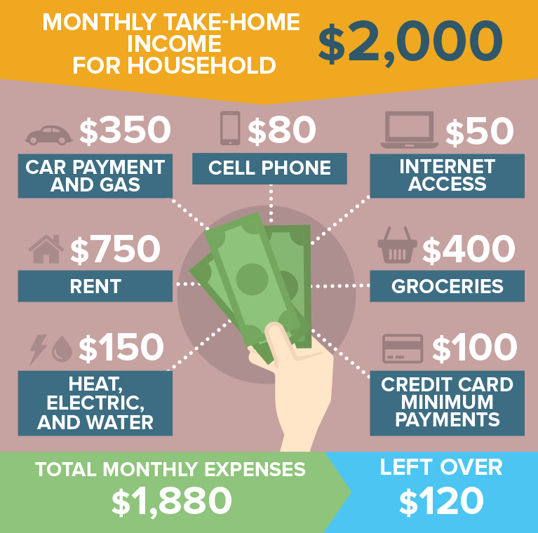 Monthly take-home income for household