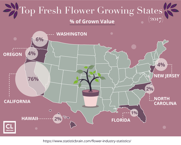Top Fresh Flower Growing States